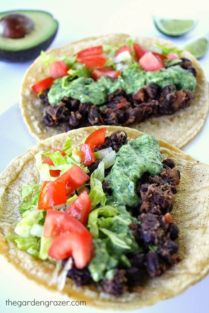 Vegan Black Bean Tacos with Avocado Sauce