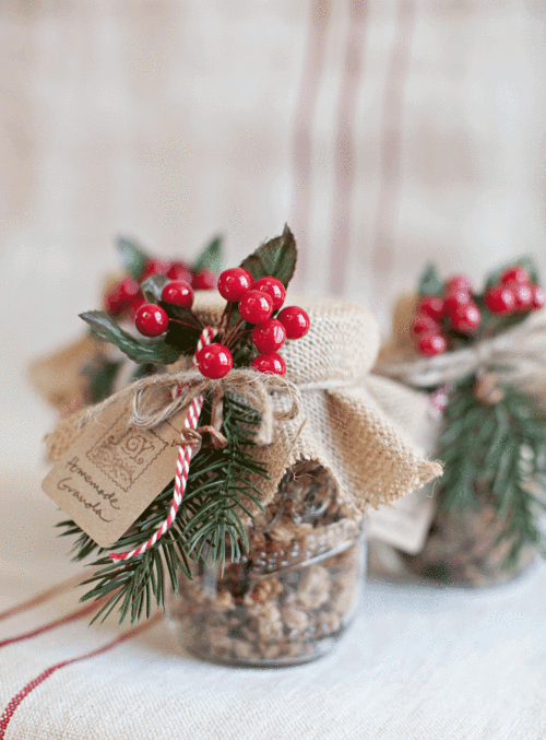 Vegan Christmas Granola