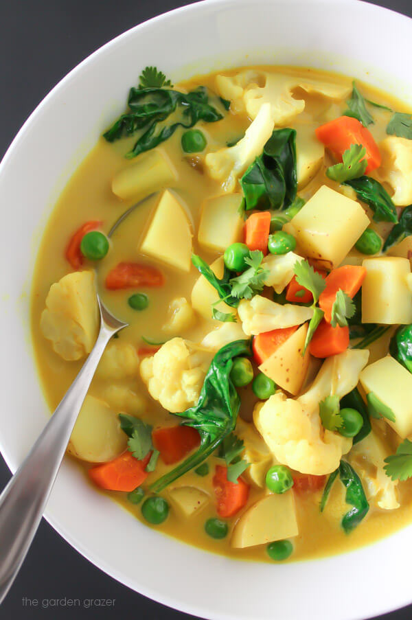 Vegan Vegetable Curry Soup