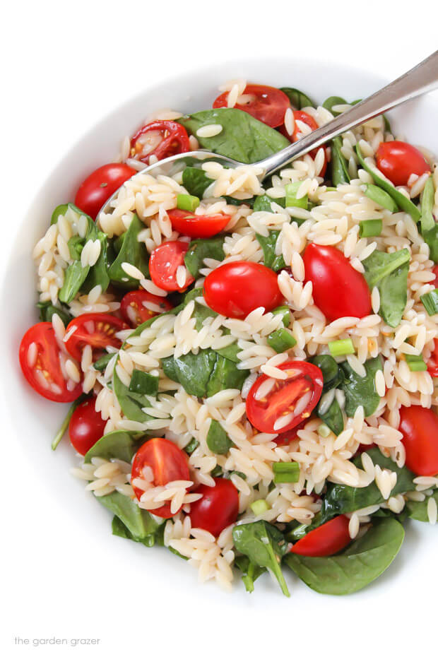 Vegan Orzo Salad with Spinach and Tomato