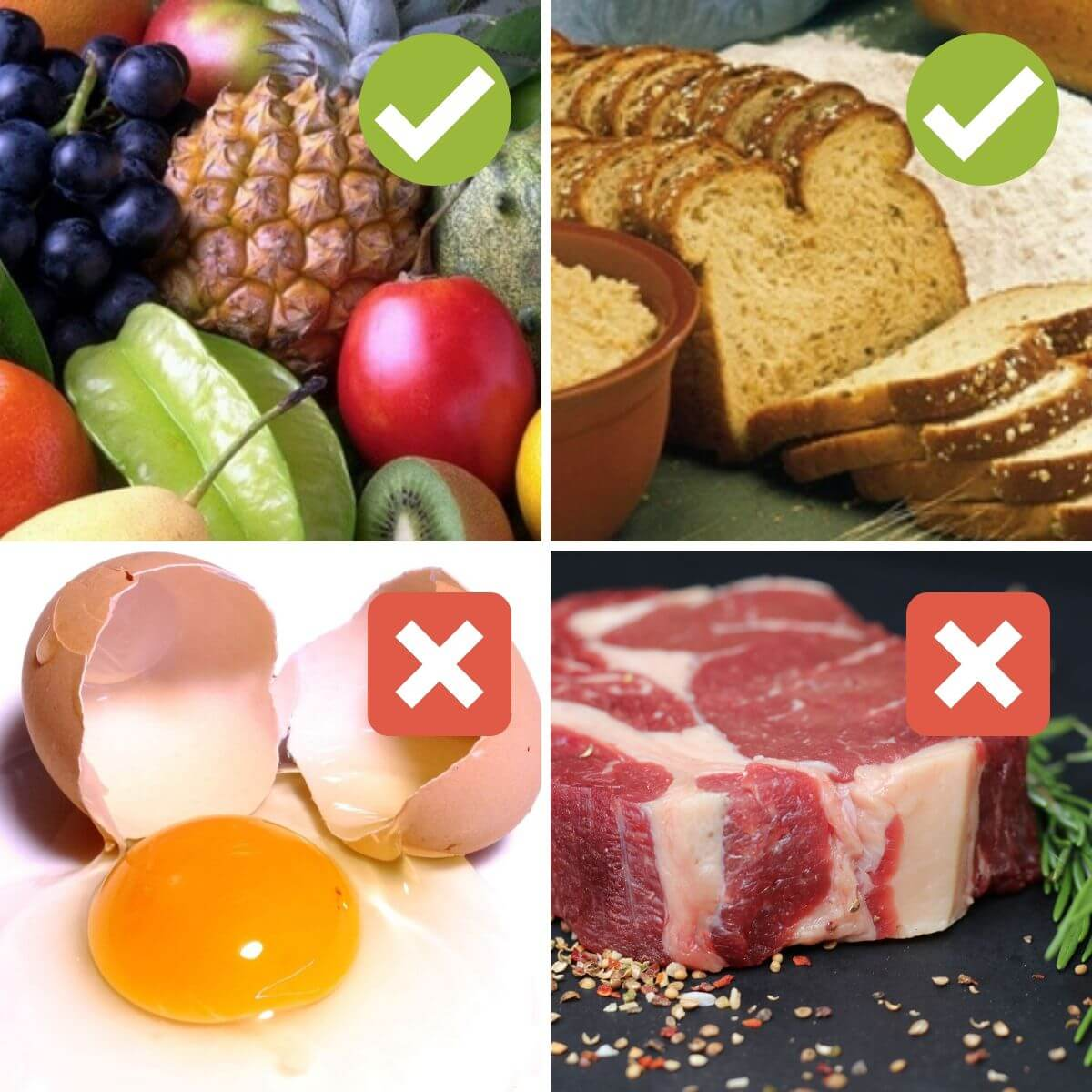 what can't vegans eat: list of foods