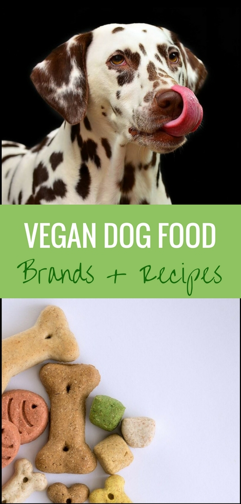 Read about the best vegan dog food brands and homemade recipes to give and make for your furry best friend. If done properly, dogs thrive on a plant-based diet, after all! | The Green Loot #vegan #dogfood