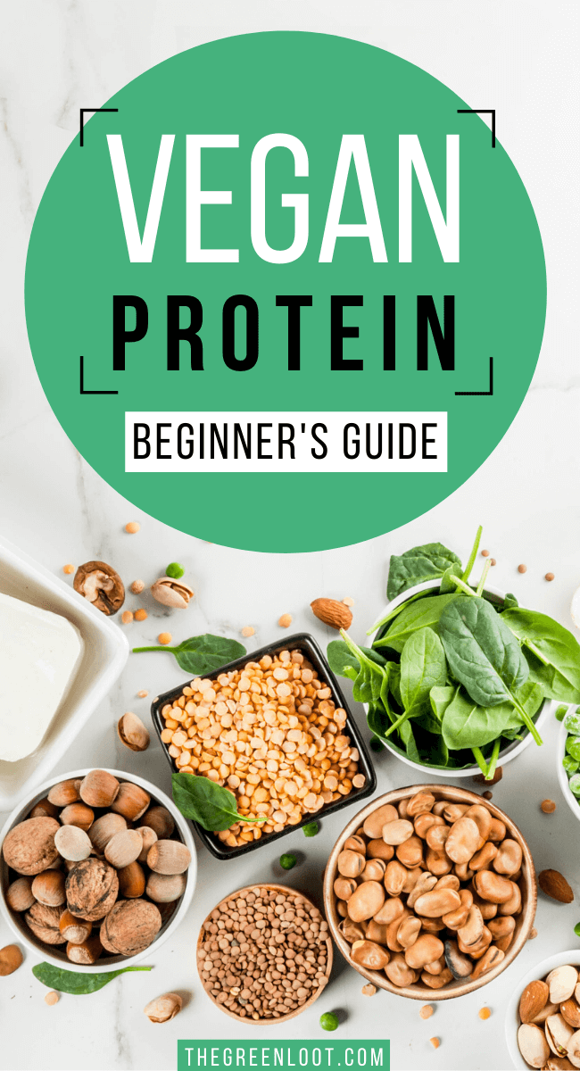 An easy beginner's guide to all the vegan protein sources! Learn all about plant protein. | The Green Loot #vegan #plantbased