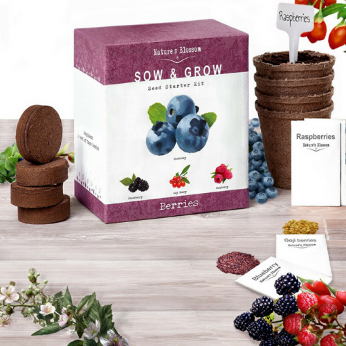 Grow Your Own Berries Starter Kit, Best Quality - Buy at The Vegan Shop!
