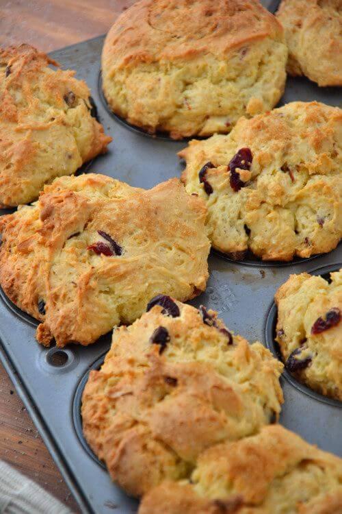 Vegan Orange Cranberry Oatmeal Muffin