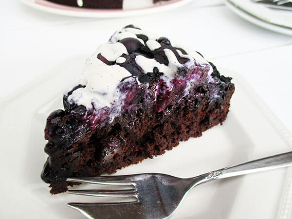 Vegan Blueberry Chocolate Cake (gf)
