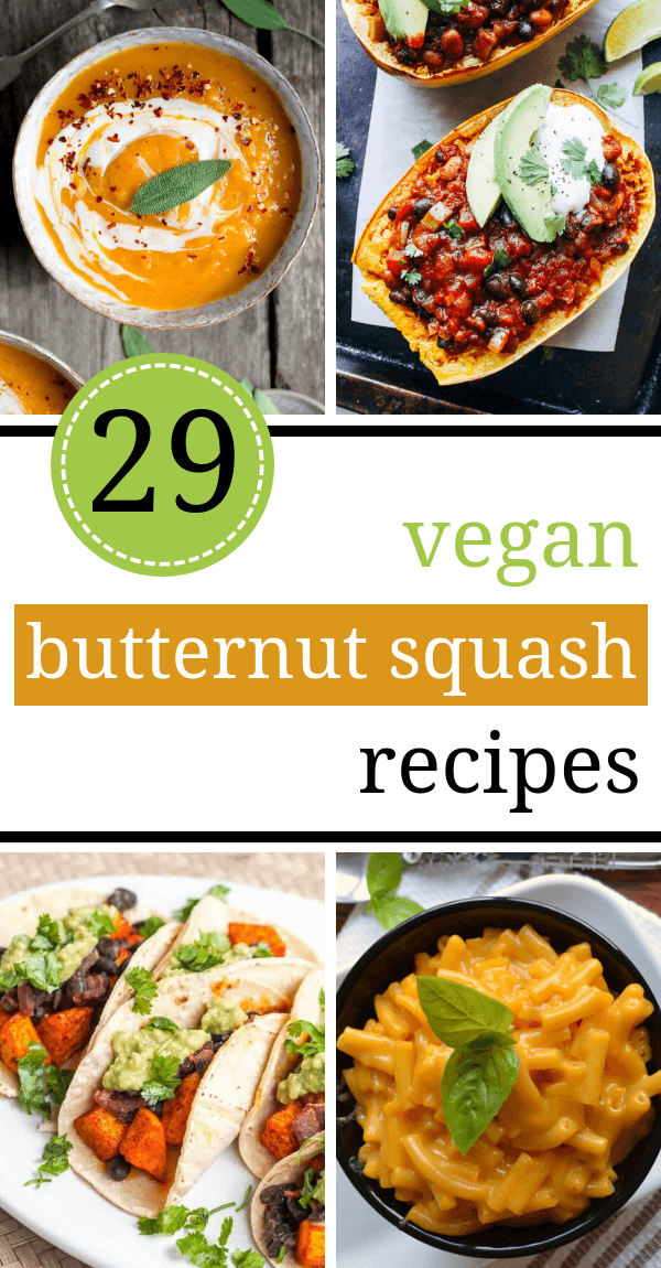 Wouldn't you agree that, the ideal Fall evening has a big bowl of delicious butternut squash in it? You can make any of these Vegan Butternut Squash Recipes and you are in for a warming, healthy and truly delicious meal.   The Green Loot #vegan #veganrecipes #butternutsquash #healthyeating #dairyfree