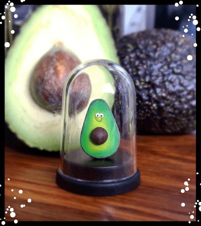 Pet Avocado