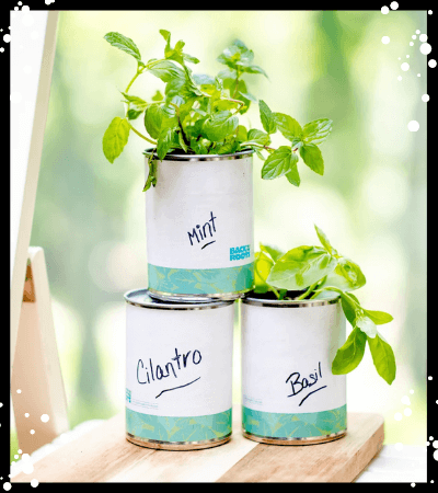 Herbs in a Can